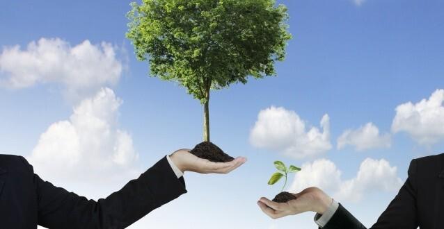 Groeien doe je buiten je comfort zone - Hoe een boom te verlichten ...