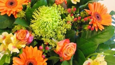 Verras je zieke collega met een bloemetje!