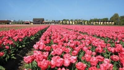 vergaderarrangementen in Noord-Holland – tips